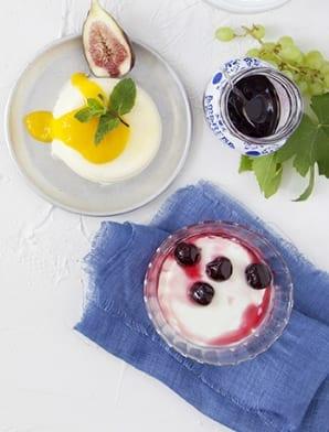 yogurt_big